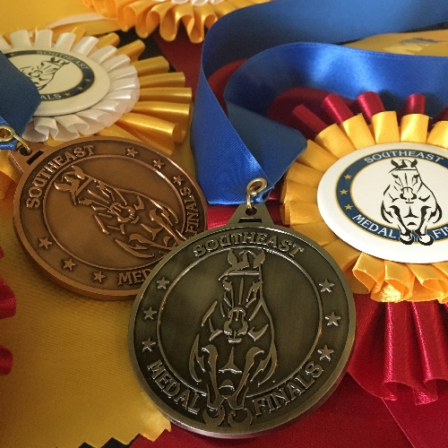 spin cast medals and rosettes