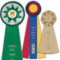 rosette-award-ribbons