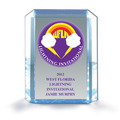 Full Color Blue Shimmer Acrylic Swimming Award