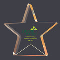 Gold Star Shimmer Acrylic Award Trophy
