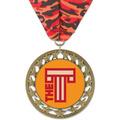RS14 Full Color Award Medal w/ Millennium Neck Ribbon
