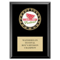 RS14 Full Color Medal Award Plaque - Black Finish