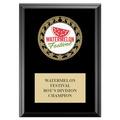 RS14 Full Color Medal Award Plaque - Black Finish
