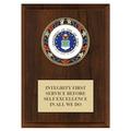 RSG Full Color Award Medal Plaque - Cherry Finish