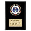 RSG Full Color Award Medal Plaque - Black Finish
