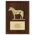 Pony Award Plaque