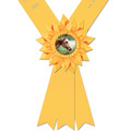 Diplomat Award Sash