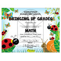 Full Color Custom School Certificates - Lady Bug Design