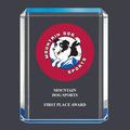 Blue Shimmer Dog Show Acrylic Award Trophy