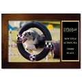 Espresso Hard Wood Dog Show Award Frame