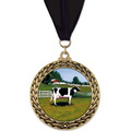 GFL Full Color Fair, Festival & 4-H Award Medal w/ Grosgrain Neck Ribbon