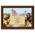 Farm Animal Fair, Festival & 4-H Award - Cherry Finish
