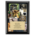 Wildlife Award Plaque - Black