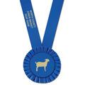 Olympian Fair, Festival & 4-H Award Sash
