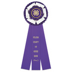 Dutchess Fair, Festival & 4-H Rosette Award Ribbon