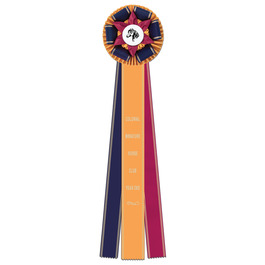 Hampton Fair, Festival & 4-H Rosette Award Ribbon
