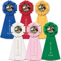Stock Beauty Fair, Festival & 4-H Rosette Award Ribbon