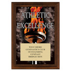 Athletic Excellence Award Plaque - Cherry Finish