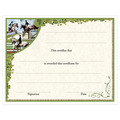 In-Stock Full Color Horse Show Award Certificate - Combined Training Design