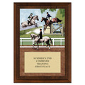 Combined Training Full Color Plaque - Cherry Finish