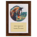 Dressage Horse Head Award Plaque - Cherry Finish