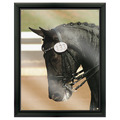 Full Color Horse Show Award Plaque - Black w/ Acrylic Overlay