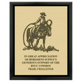 Horse Show Award Plaque - Black w/ Engraved Plate