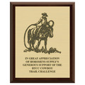 Horse Show Award Plaque - Cherry Finish w/ Engraved Plate