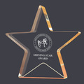 Gold Star Shimmer Acrylic Horse Show Trophy