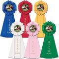 Stock Beauty Horse Show Rosette Award Ribbon