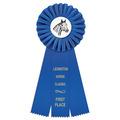 Clare Horse Show Rosette Award Ribbon
