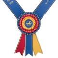 Rothbury Award Sash