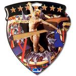 CSM Medal