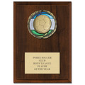 Color Epoxy Medal Plaques