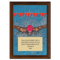 Butterfly Swim Award Plaque - Cherry Finish