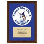 Custom Swimming Award Plaque - Cherry Finished