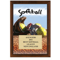 5&quot; x 7&quot; Full Color Softball Plaque - Cherry Finish