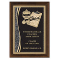 Brass Designer Coaches Award Plaque