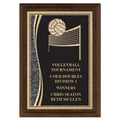 "5"" x 7"" Brass Designer Volleyball Plaque"