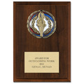 CEM Medal Award Plaque