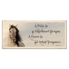 """Treasure"" Vintage Horse Plaque"
