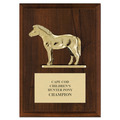 Pony Award Plaque