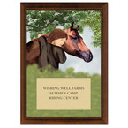 Horse & Child Full Color Plaque - Cherry Finish