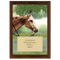 Western Full Color Plaque - Cherry Finish