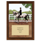 Dressage Full Color Plaque - Cherry Finish