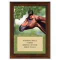 Horse Head Full Color Horse Show Award Plaque - Cherry Finish