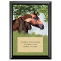 Horse &amp; Child Full Color Plaque - Black