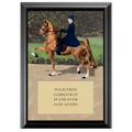 Saddle Seat Design Full Color Plaque - Black