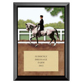 Dressage Full Color Plaque - Black