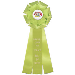 Preston Fair, Festival & 4-H Rosette Award Ribbon